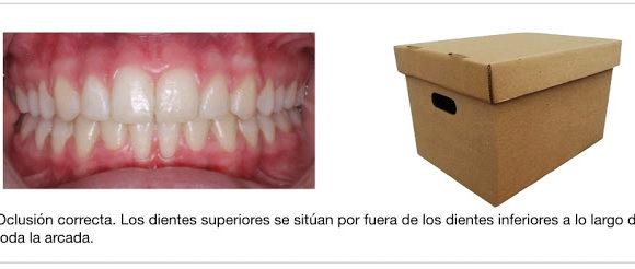 Foto 1 del artículo del Doctor Fernando de la Iglesia sobre EXPANSORES DE PALADAR versus DISYUNCIÓN MAXILAR